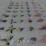100多组PBR植物网格品种3D模型Unity游戏素材资源
