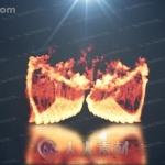 烟雾火焰翅膀弥漫消散特效logo动画演绎AE模板