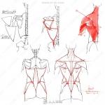 人体骨骼姿势绘画解剖草图参考合集