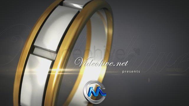 《幸福婚礼第二版AE模板》videohive happy wedding v2 1747634