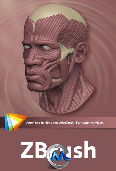 《ZBrush数字雕刻绘画实例教程》video2brain ZBrush Spanish
