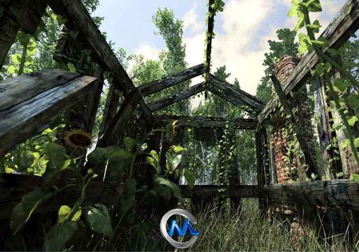 《树木植物实时建模软件V6.2.3版》SpeedTree Cinema Ver 6.2.3 Win x32/x64