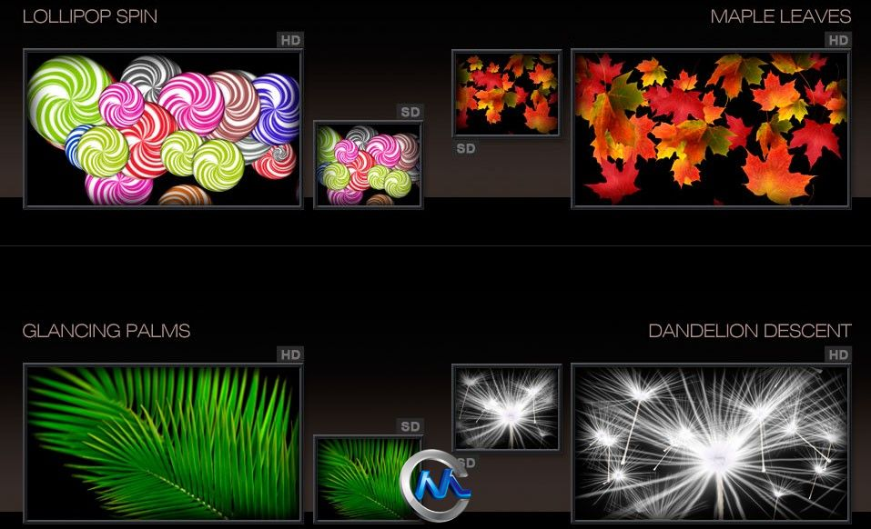 《DJ视频转场特效视频素材合辑Vol.2》Digital Juice Animated Wipes & Transitions Collection 2 Switching Gears