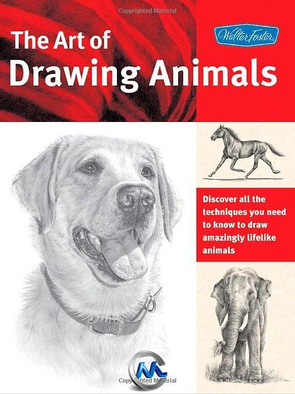 《动物手绘绘画技术艺术书籍》The Art of Drawing Animals Discover all the techniques you need to know to draw amazingly lifelike animals