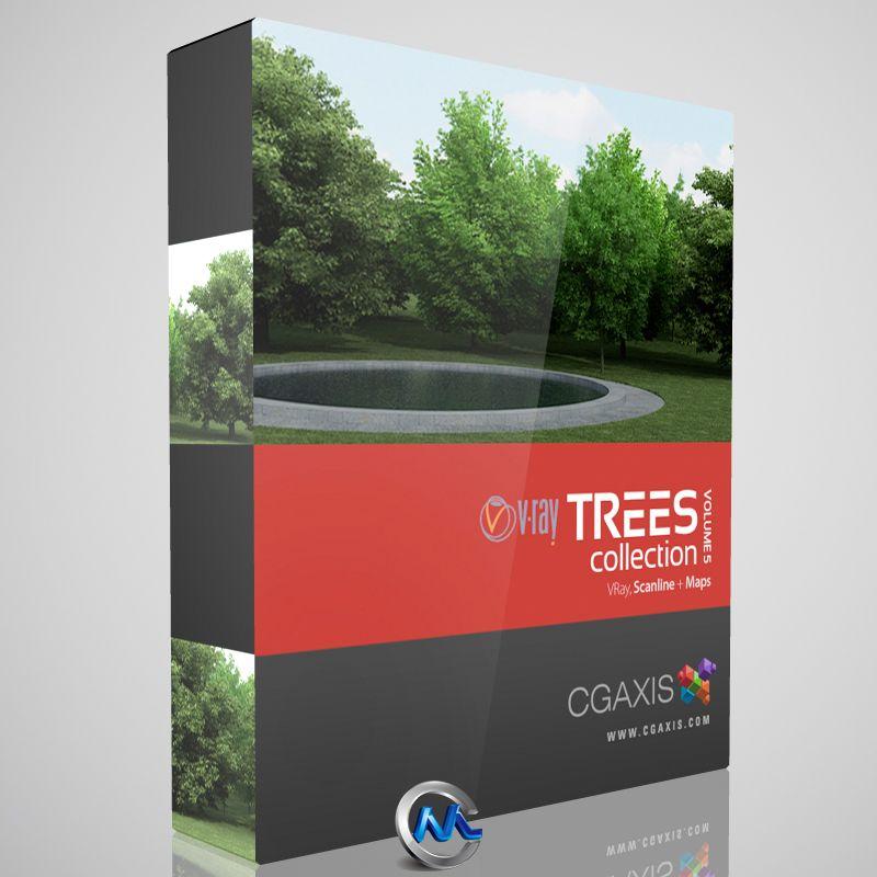 《树木3D模型合辑》CGAxis Models Volume 5