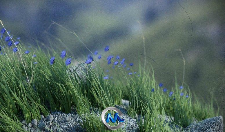 《植物生态系统插件》MDO Plants for 3Ds Max
