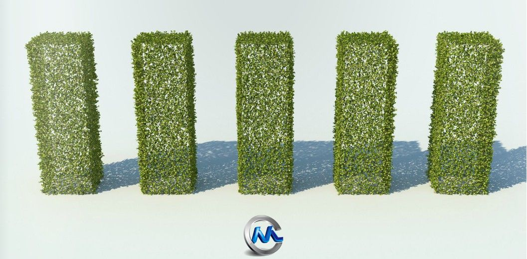 《草丛灌木3D模型合辑》R&D Group iBushes vol.1