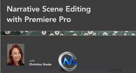 《Premiere叙事视频剪辑教程技法技巧》Lynd陆俨少节奏讲座图片