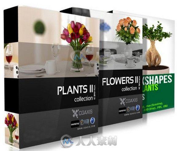 盆栽植物3D模型合辑 CGAxis Models Volume 21 26 and Convexshapes 3D Potted Plants