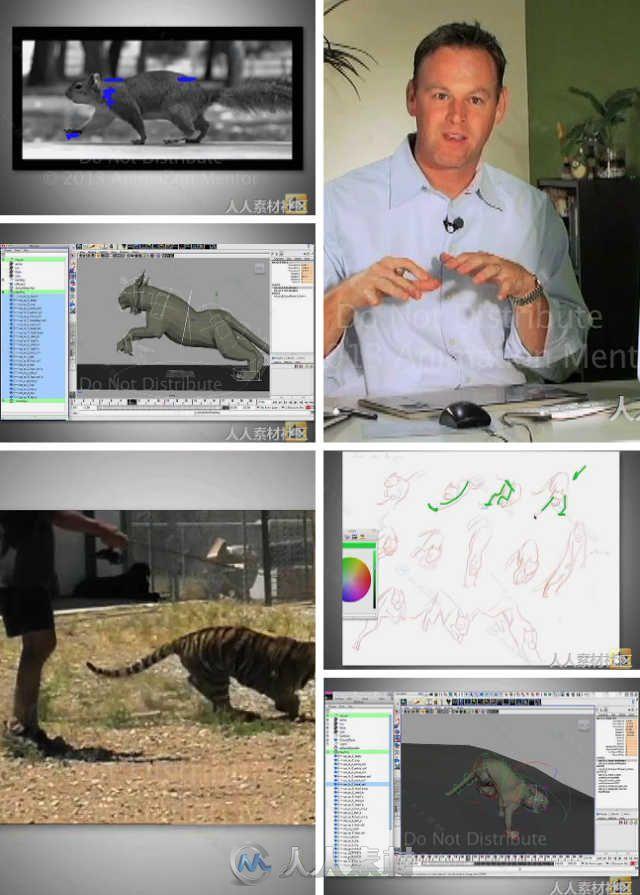 动物运动规律动画解析视频教程