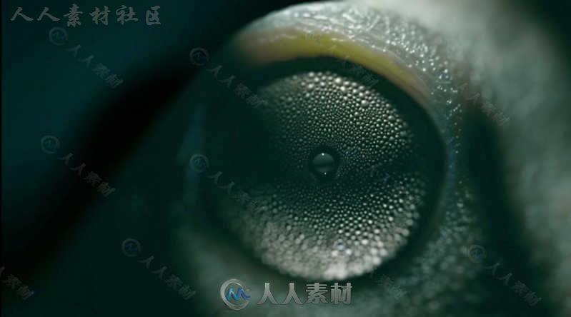 Maxon Cinema 4D三维设计软件R19.053版20 / 作者:抱着猫的老鼠 / 帖子ID:16742707,4528491