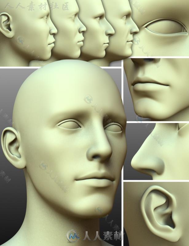 超精细的男性的头部和面部3D模型合辑
