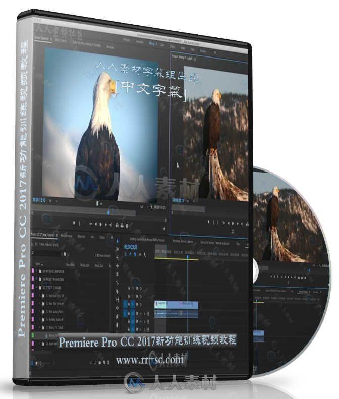 第110期中文字幕翻译教程《Premiere Pro CC 2017新功能训练视频教程》人人素材字幕组
