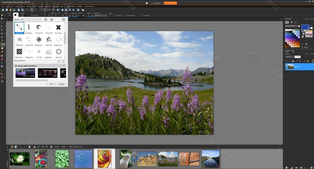 PaintShop 2020专业相片编辑软件V22.2.0.8版