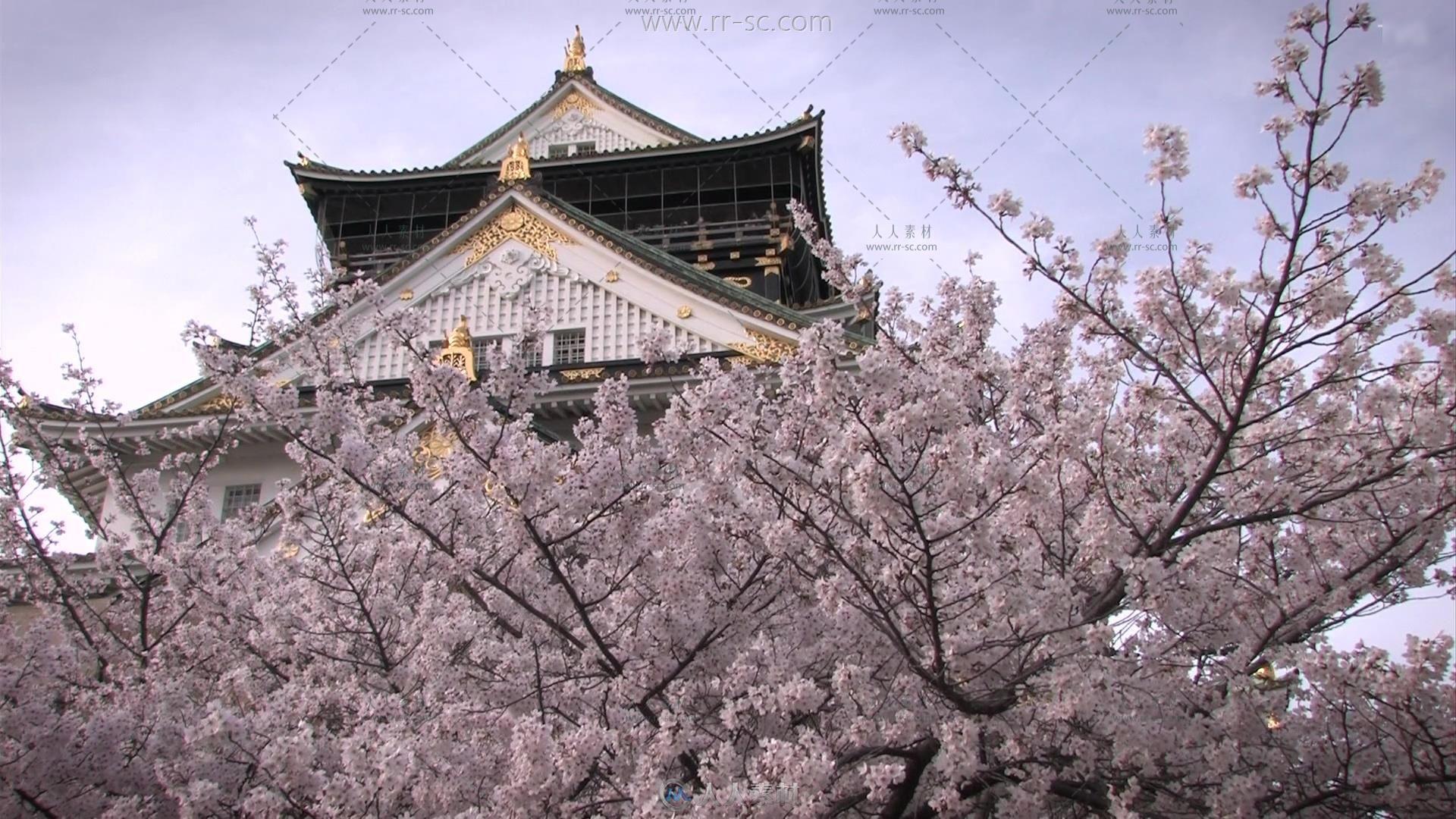 日本大阪城建筑樱花旅游景点实拍视频素材