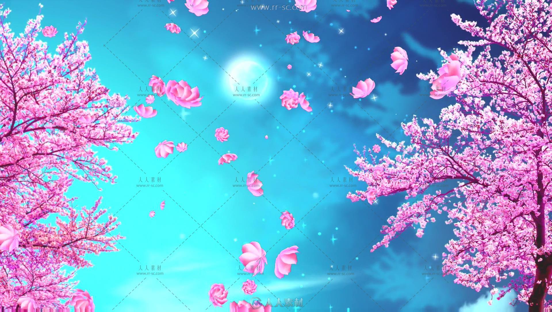 浪漫樱花花瓣飘落唯美背景视频素材