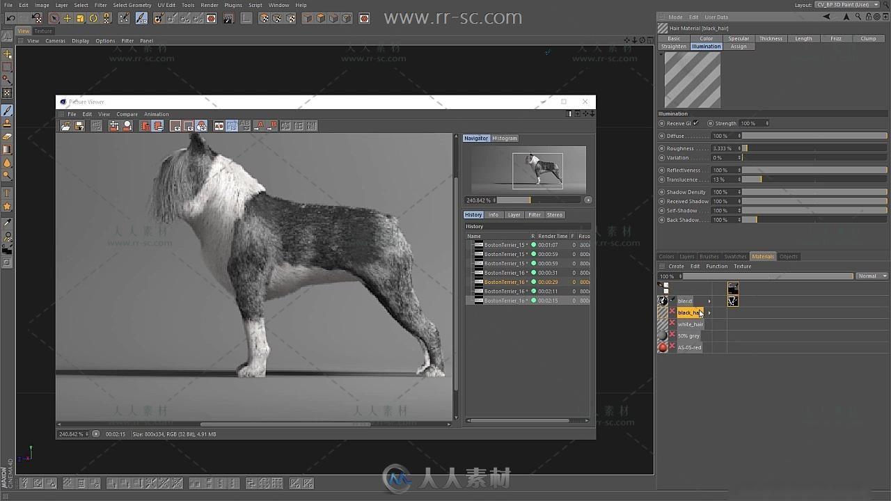 Illustration波士顿犬图制作视频教程