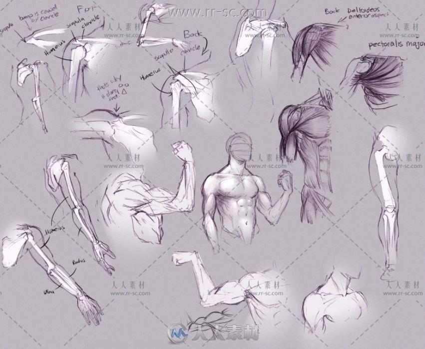 人体手绘线稿动态参考素材资源