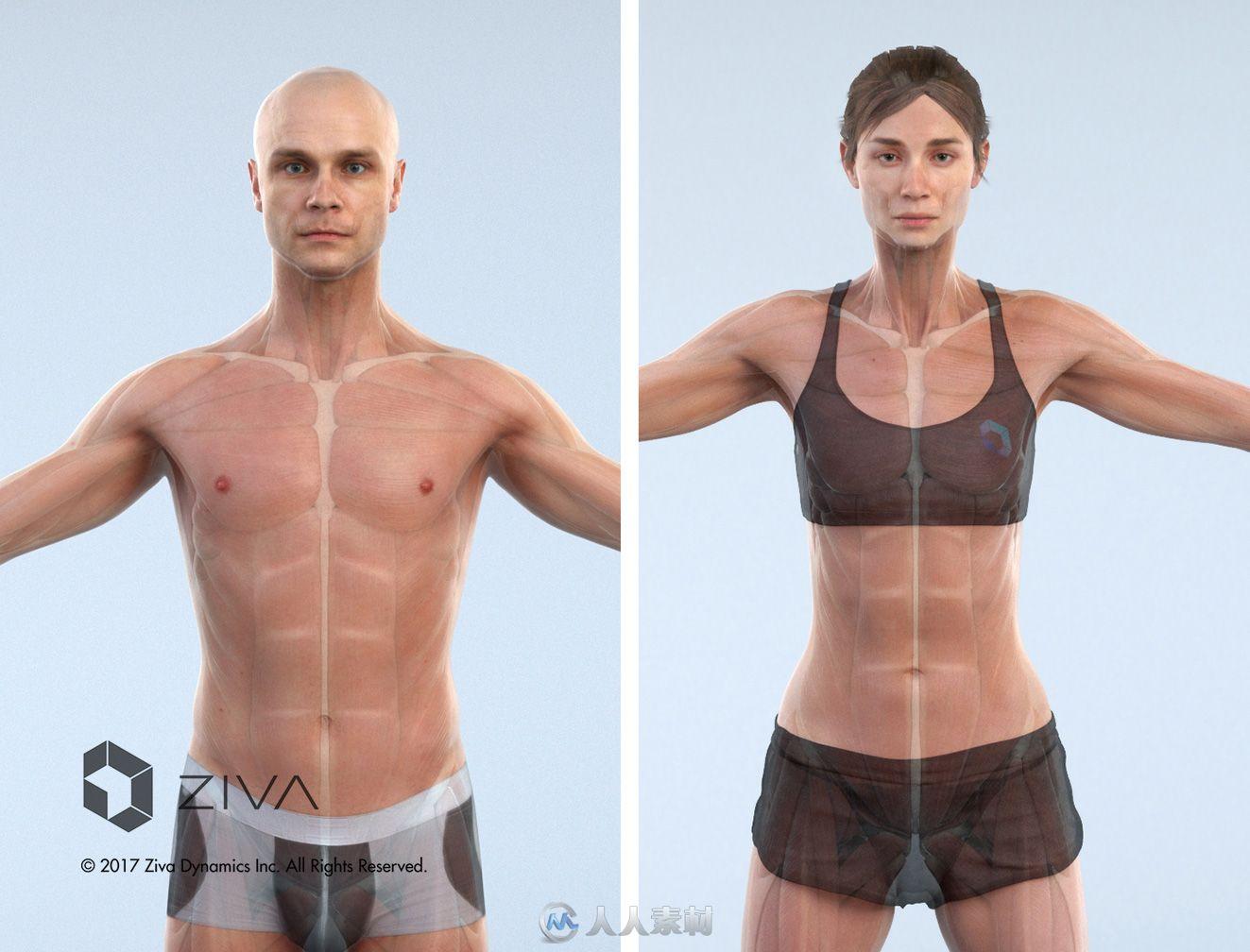 Ziva Dynamics Ziva VFX骨骼肌肉运动模拟Maya插件V1.6版21 / 作者:抱着猫的老鼠 / 帖子ID:16755361,5650261