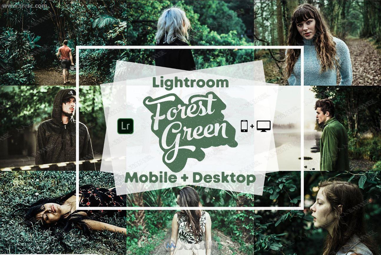 外景清新森林绿色主题雾感后期Lightroom预设