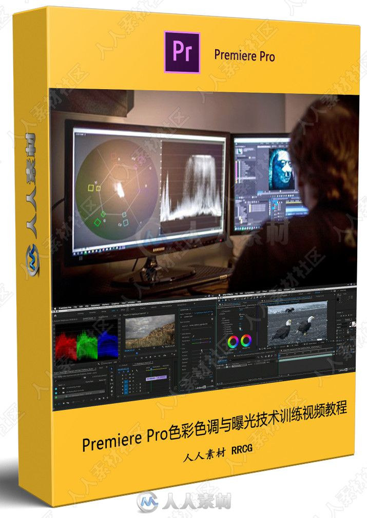 Premiere Pro色彩色调与曝光技术训练视频教程