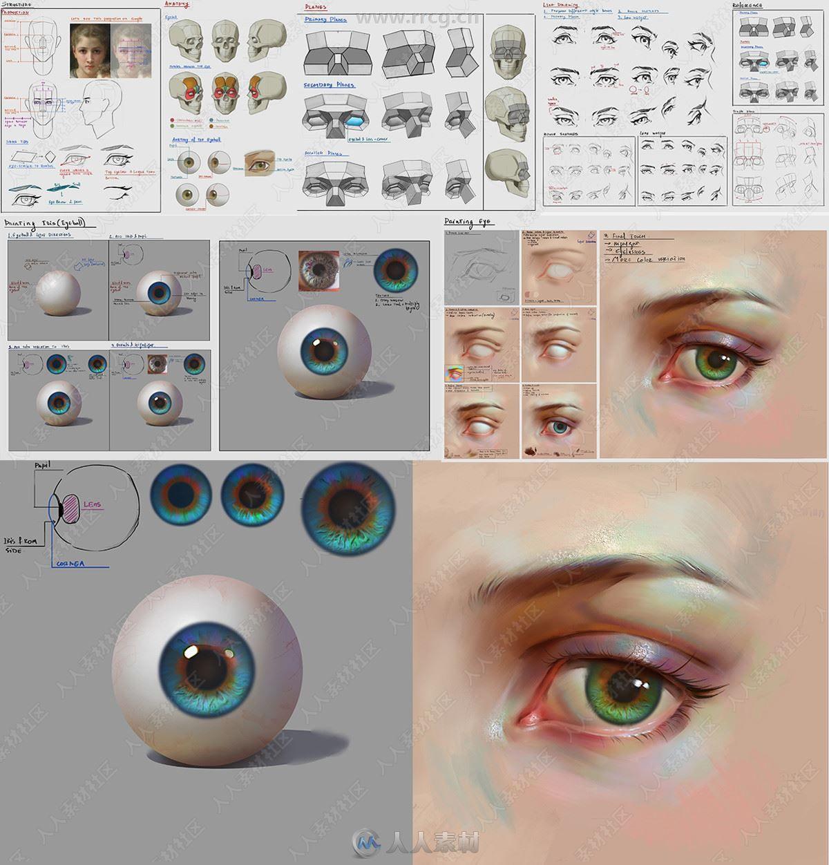 人物角色面部特征眼嘴鼻数字绘画视频教程