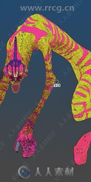 ZBrush数字雕刻和绘画软件V2020.1.1版