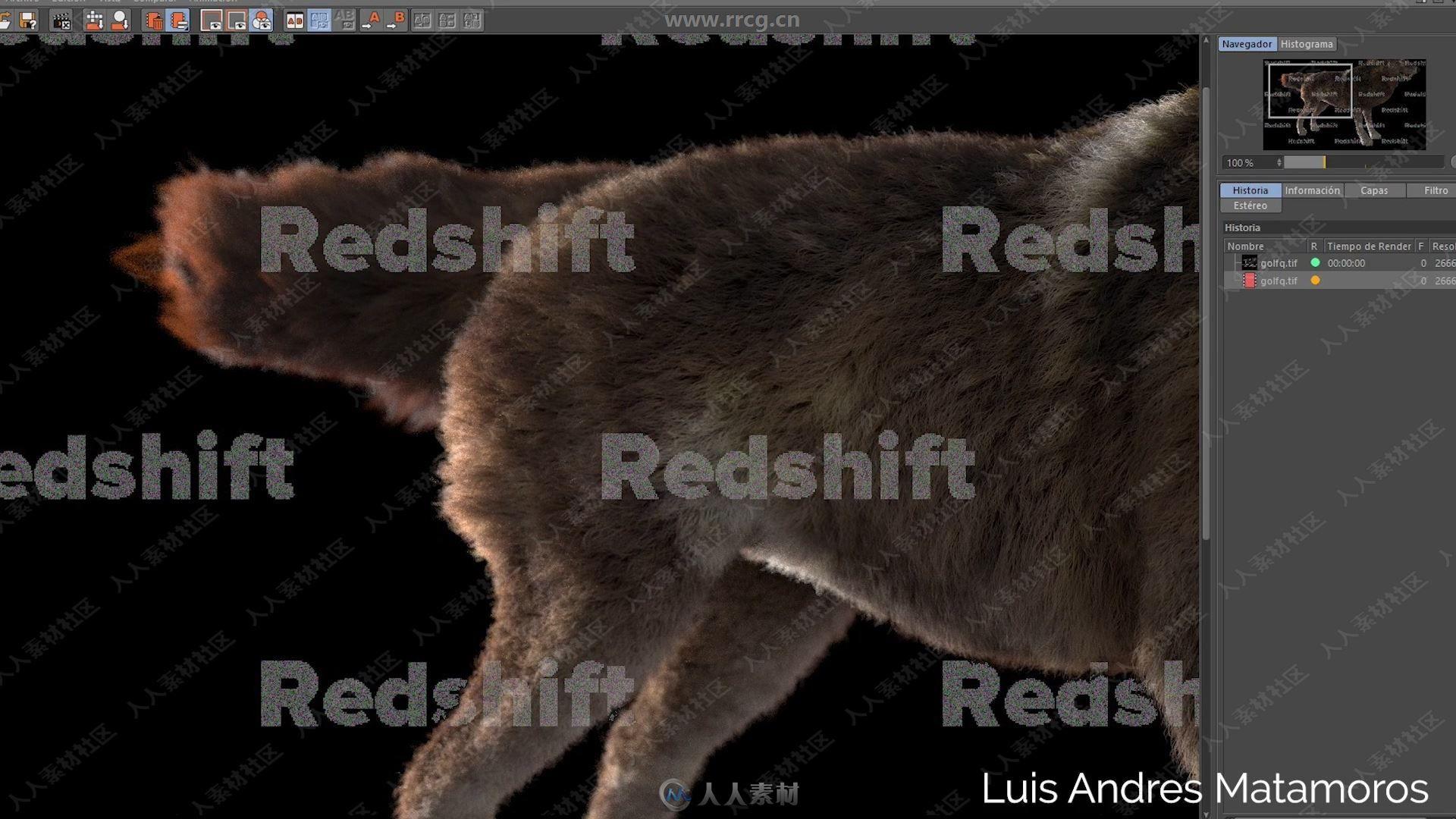 Ornatrix头发毛发C4D插件V1.0.0.22027版