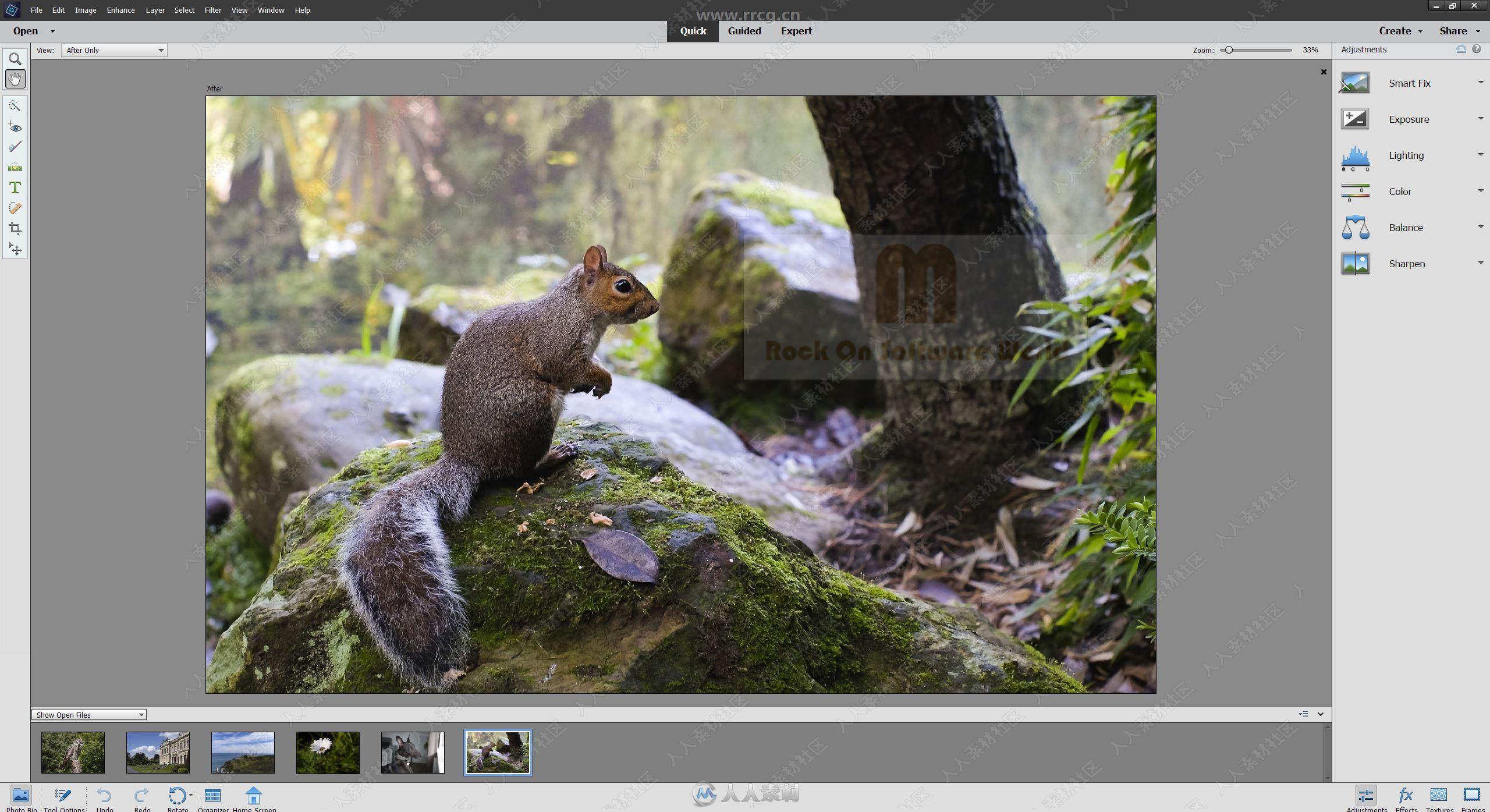 Photoshop Elements图像编辑软件V2022版