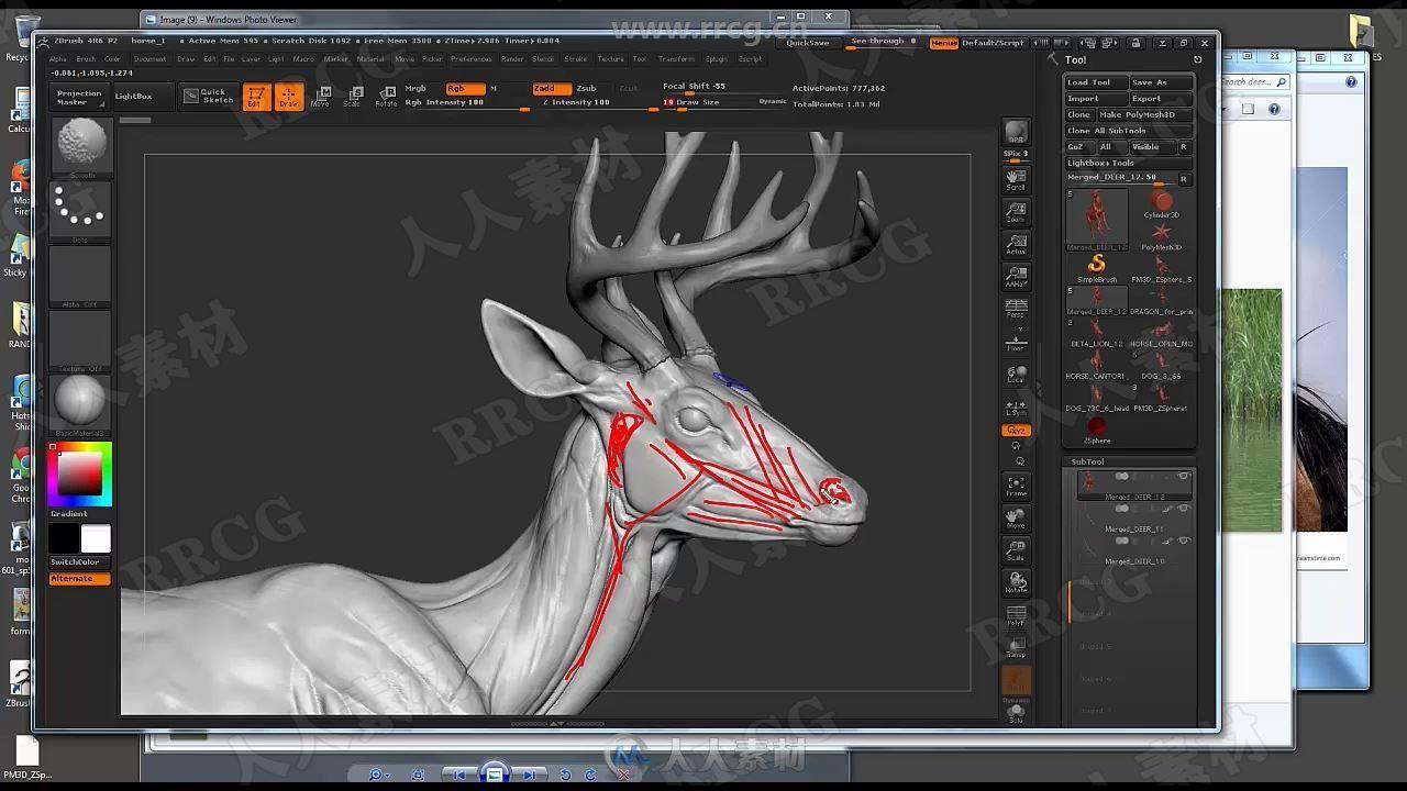 Zbrush动物雕刻结构剖析核心训练视频教程