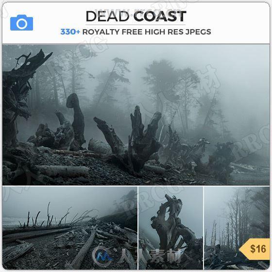 339组迷雾阴霾荒凉枯木深林高清参考图片合集