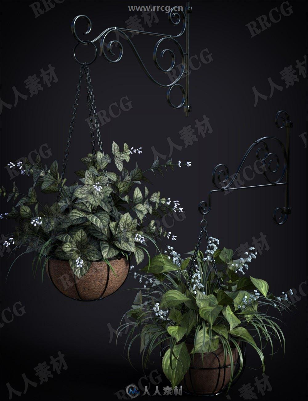 微型花园悬挂花盆茂盛植物吊篮3D模型合集