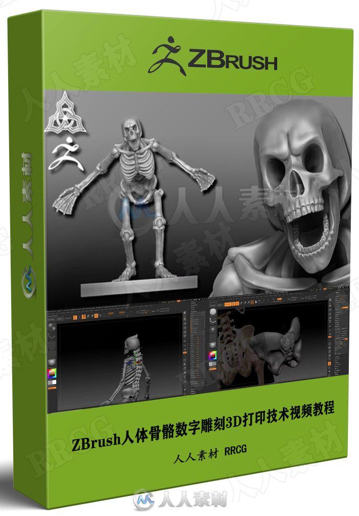 ZBrush人体骨骼数字雕刻3D打印技术视频教程