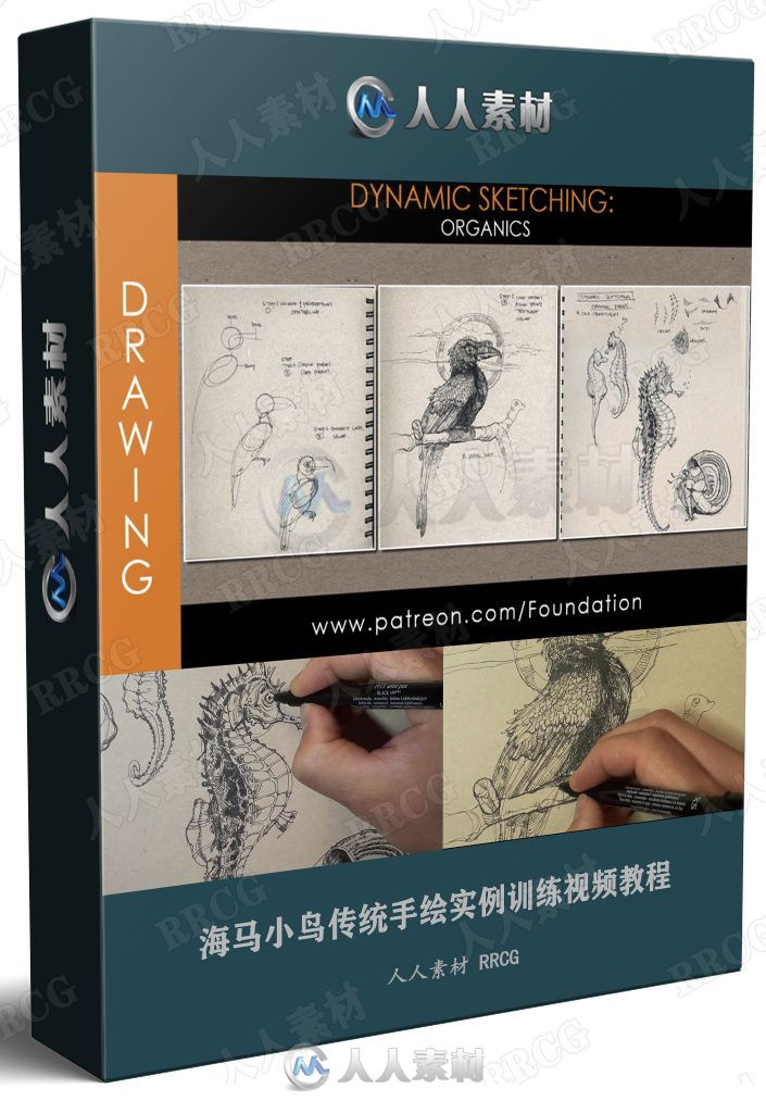 海马小鸟传统手绘实例训练视频教程