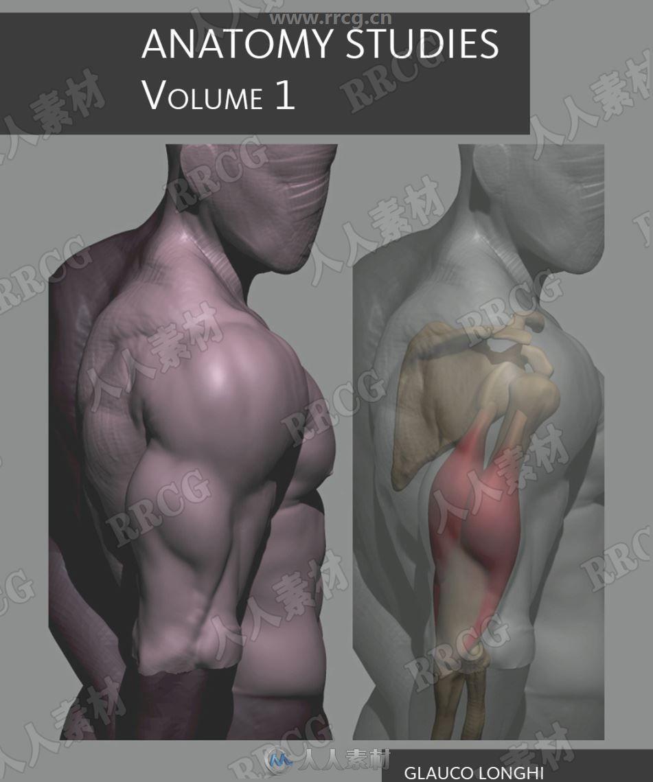 人体骨骼肌肉解剖学研究书籍+附姿势示意图