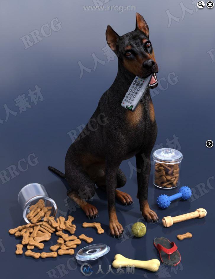 动物狗咀嚼磨牙道具3D模型合集