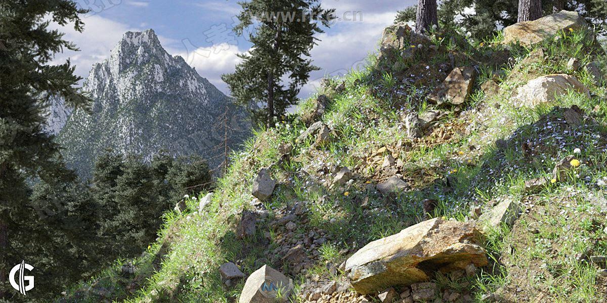 Graswald Pro逼真植物植被环境创建Blender插件V1.3.11版