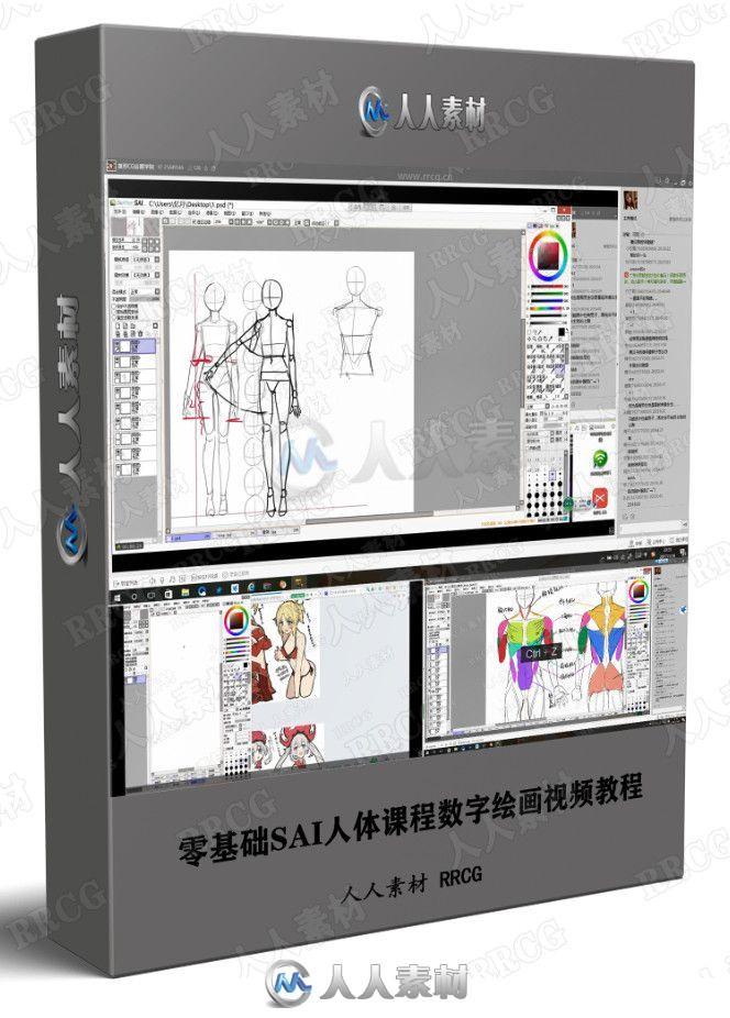 零基础SAI人体课程数字绘画视频教程