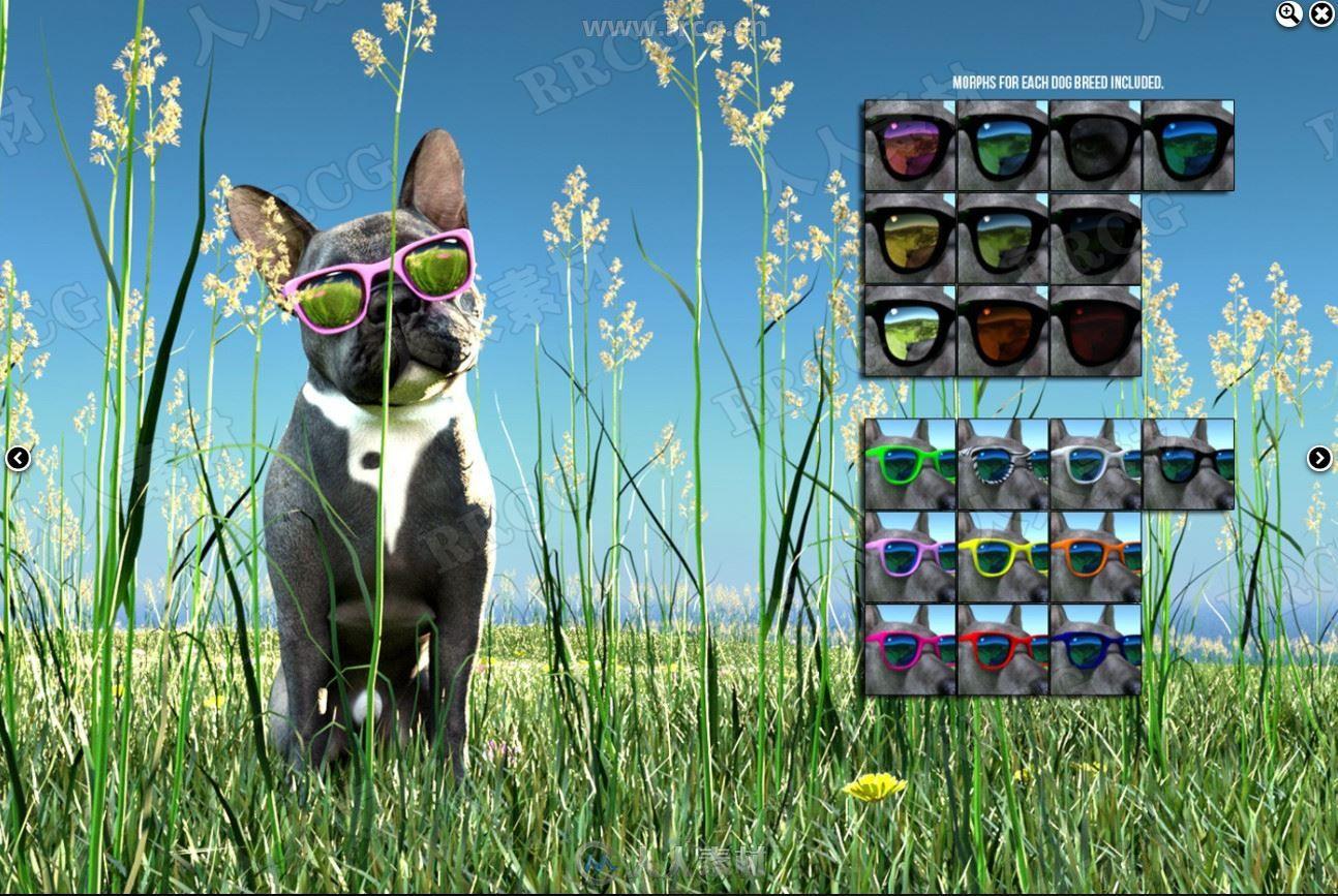 夏季环境动物小狗日常道具3D模型合集