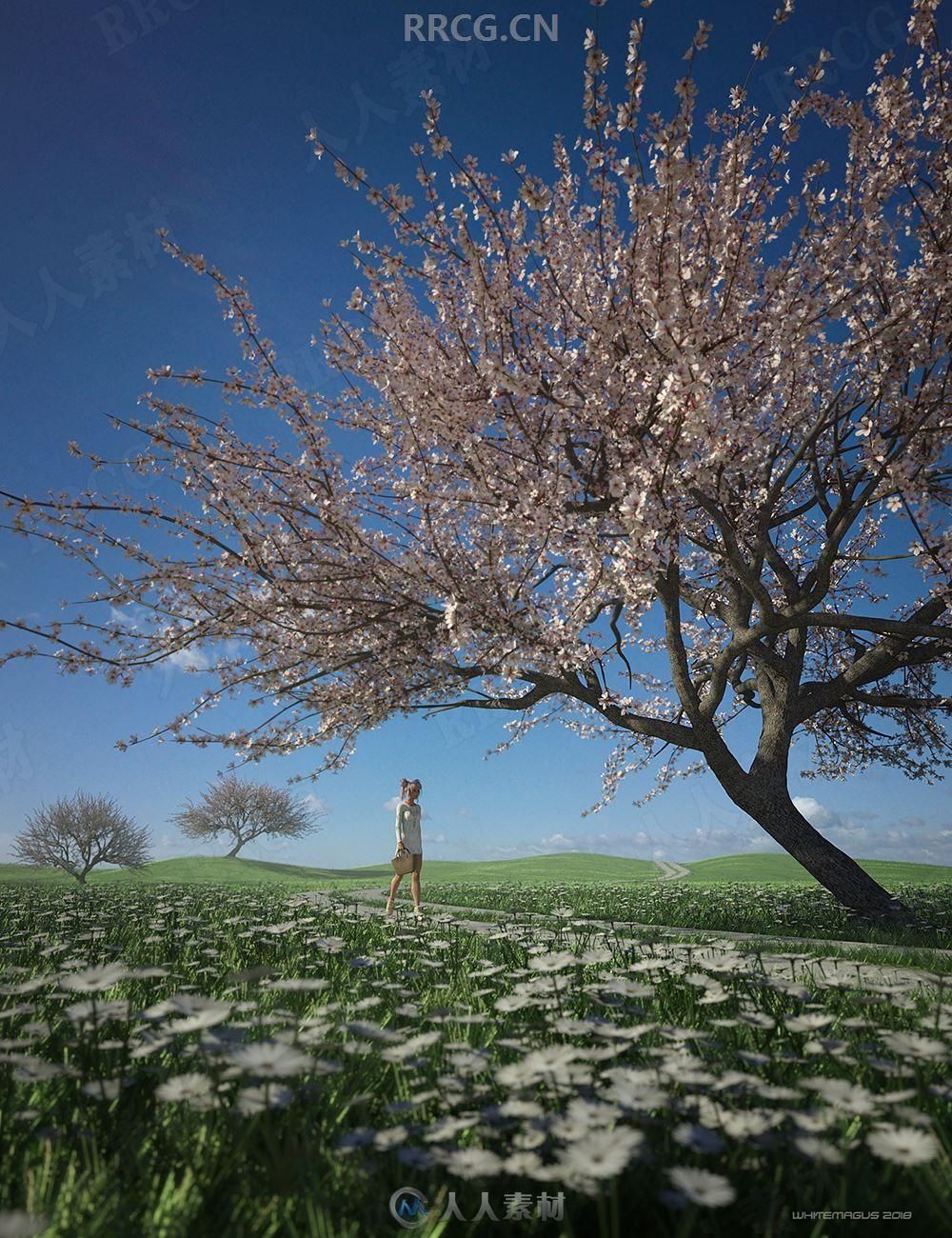 夏季唯美浪漫樱花树3D模型合集