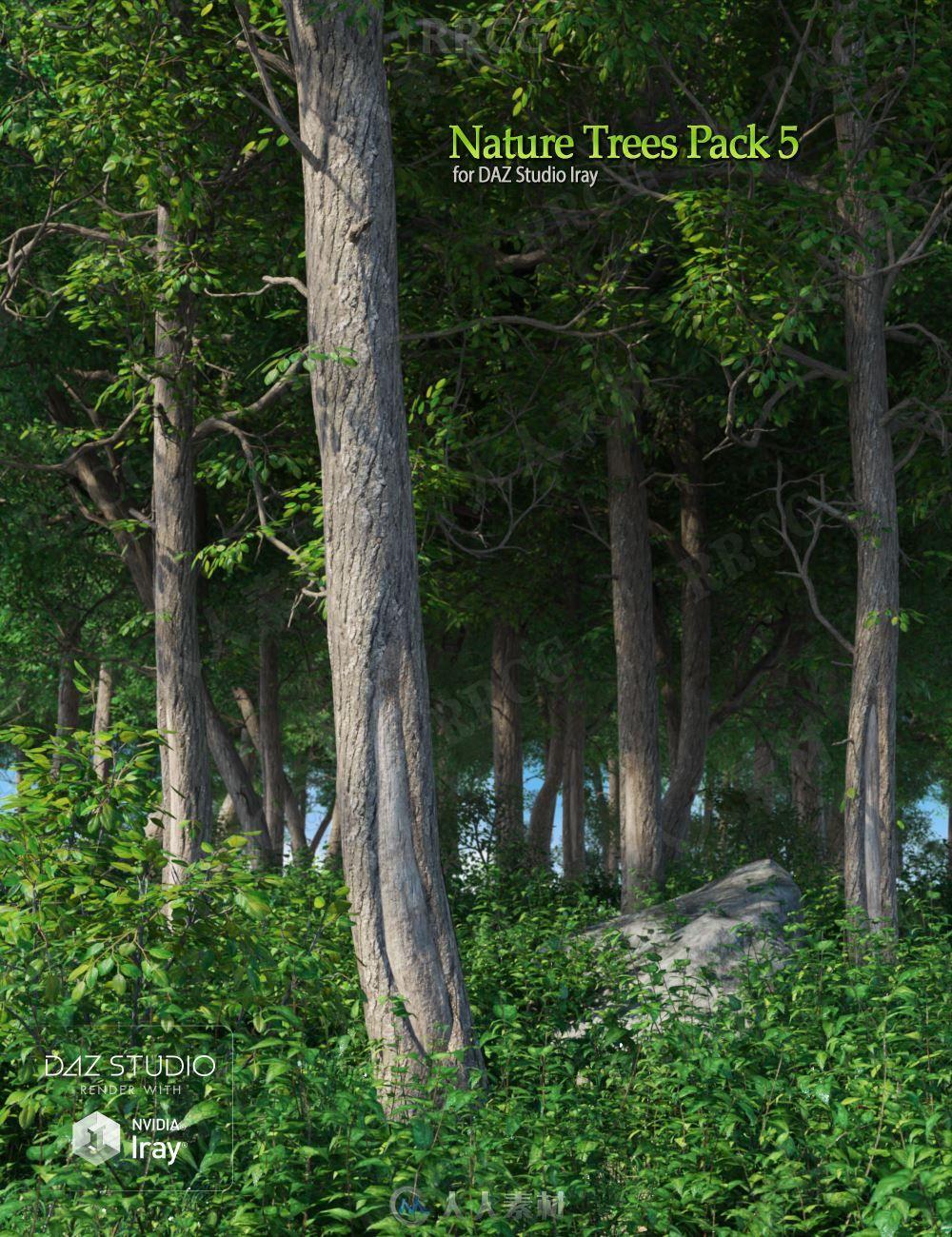 自然植被树木森林3D模型合集