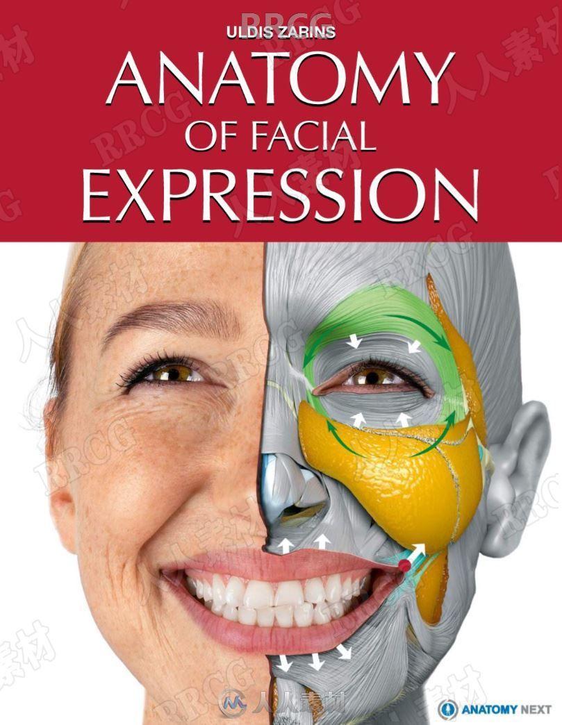 人体面部表情肌肉骨骼解剖学研究书籍