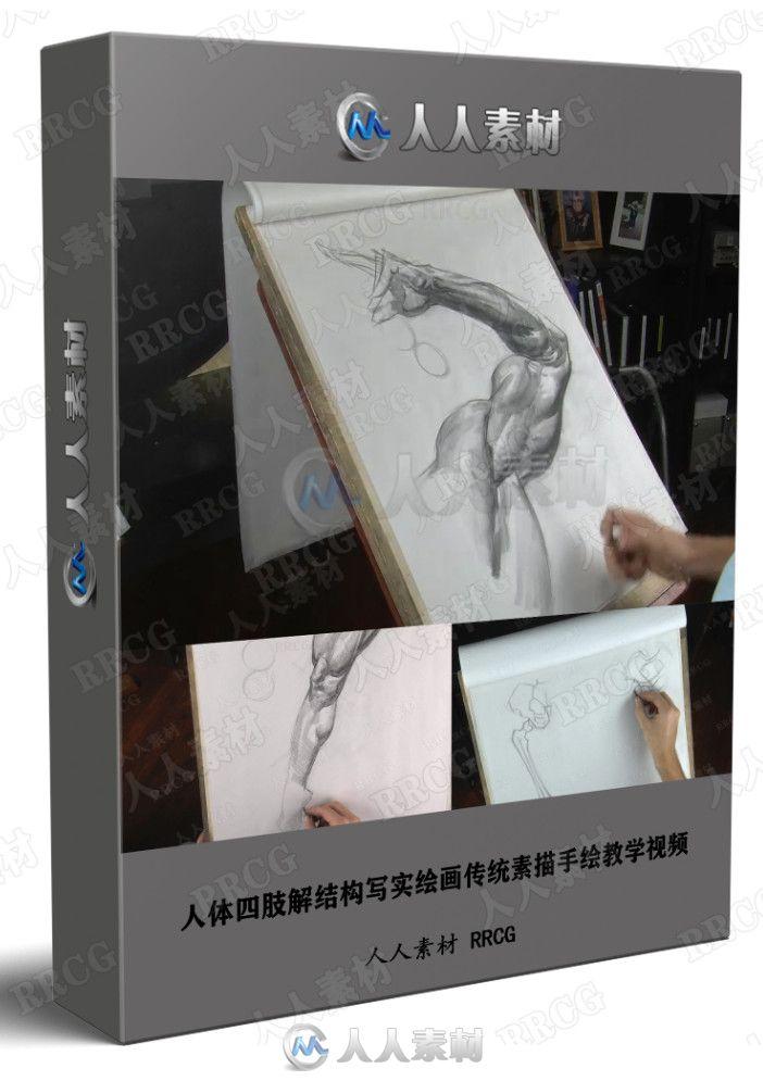 人体四肢解结构写实绘画传统素描手绘教学视频