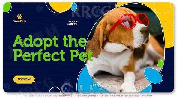 宠物狗日常卡通效果拍摄展示动画AE模板