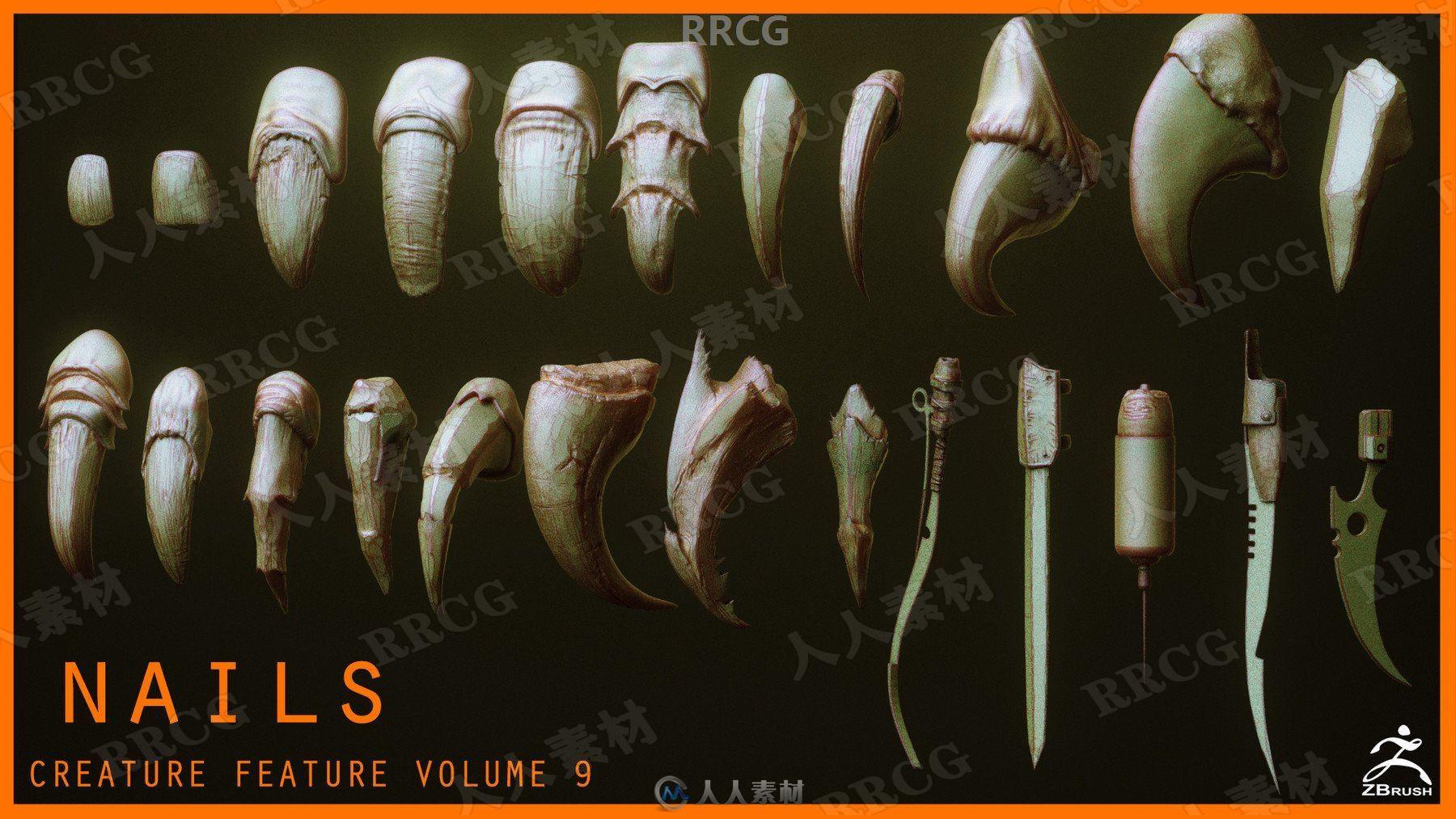 24组猛禽动物人类等指甲爪子雕刻细节3D模型