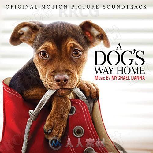 一条狗的回家路影视配乐原声大碟OST音乐素材合集