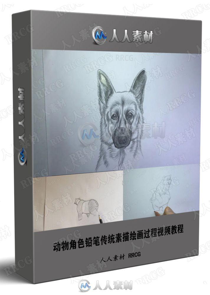 动物角色铅笔传统素描绘画过程视频教程