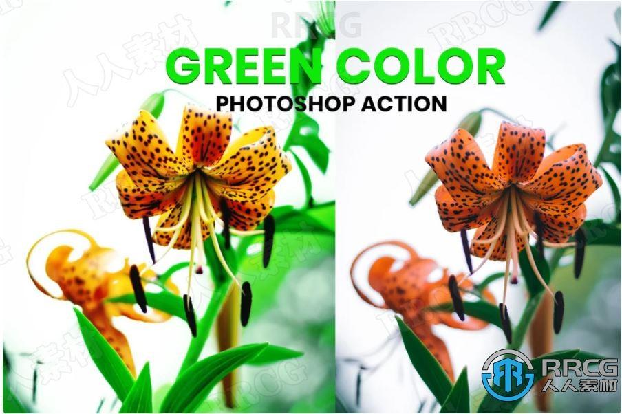 大自然植被明亮绿色色调生活照艺术图像处理特效PS动作
