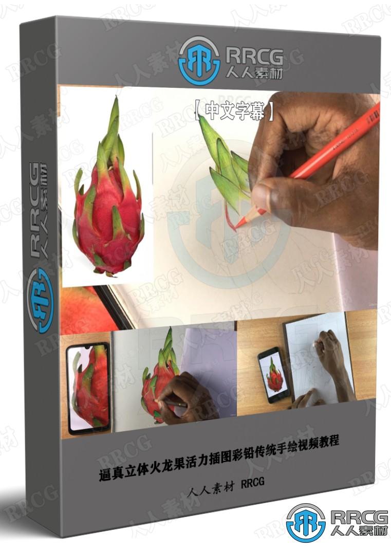 逼真立体火龙果活力插图彩铅传统手绘视频教程