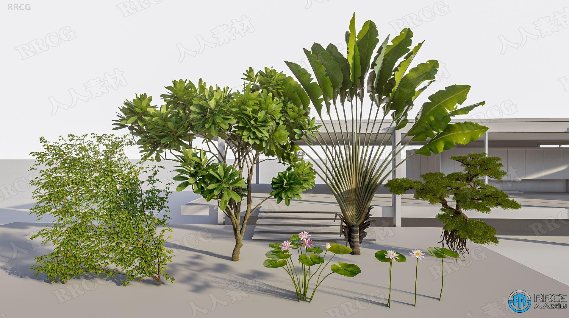 Lumion自定义树木3D模型合集